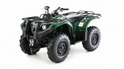 Grizzly-450 IRS